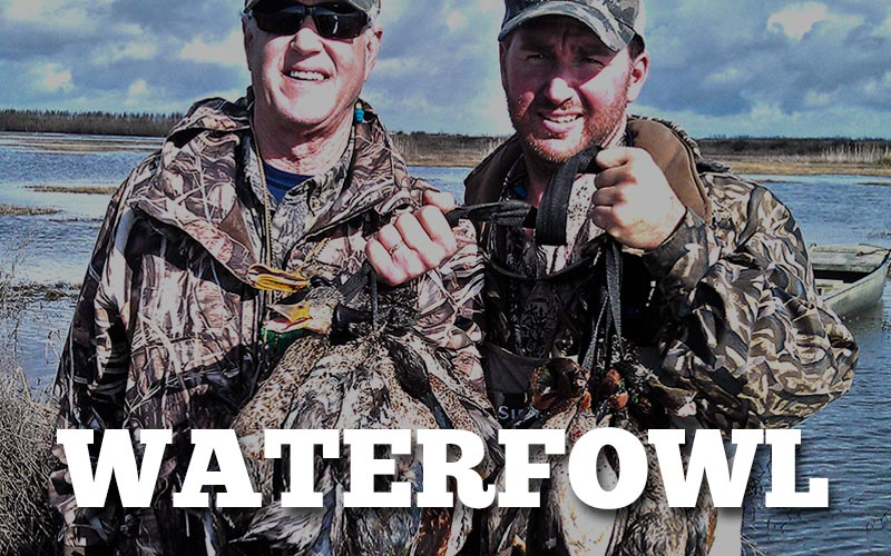 buttonWaterfowl