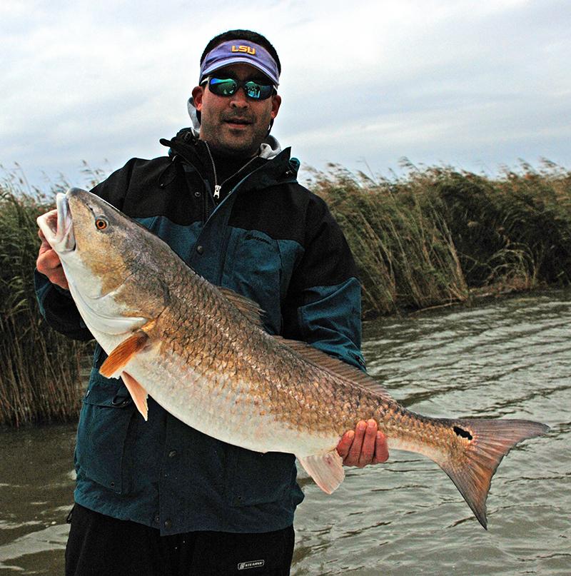 Louisiana redfish charters guides jason catchings for Venice la inshore fishing